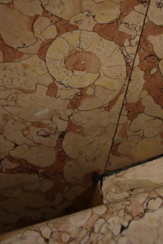 Ammonite in department store stairwell --
