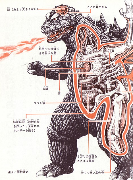Anatomy of Godzilla -- 