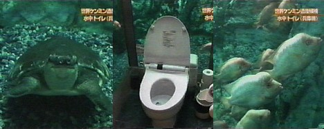 Aquarium toilet -- 