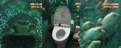 Aquarium toilet --