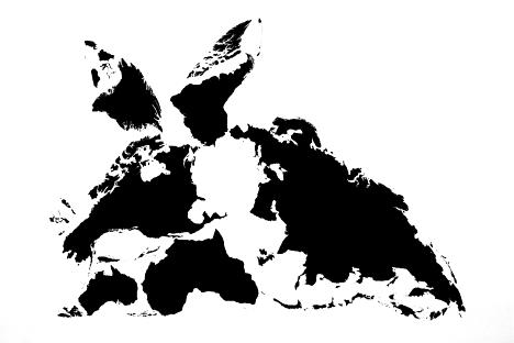 Doze animais, Rabbit -