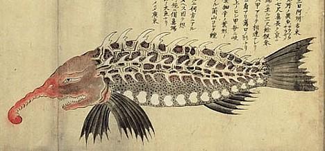 Fantastic fish --
