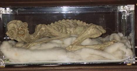 Kappa mummy --