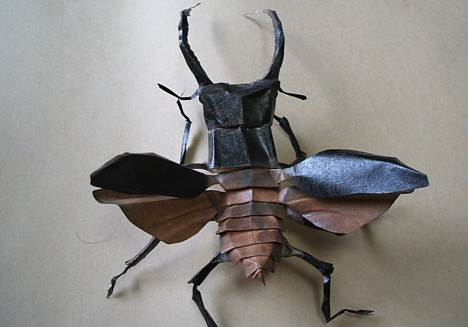 Papercraft insect --
