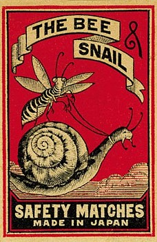 Bee and snail matchbox