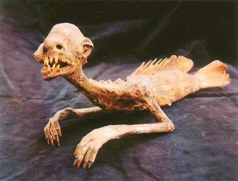 Fiji mermaid gaff --