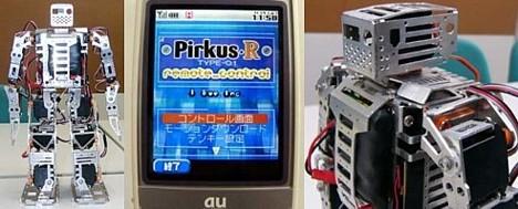 Pirkus-R Type-01