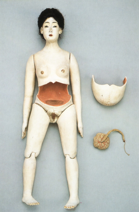 Vintage wooden pregnant mannequin, Japan -- 