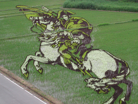 Rice paddy art, Japan --