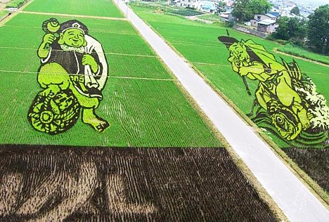 JAL logo still visible in Inakadate rice paddy art --
