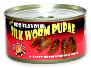 BBQ-flavored silkworms