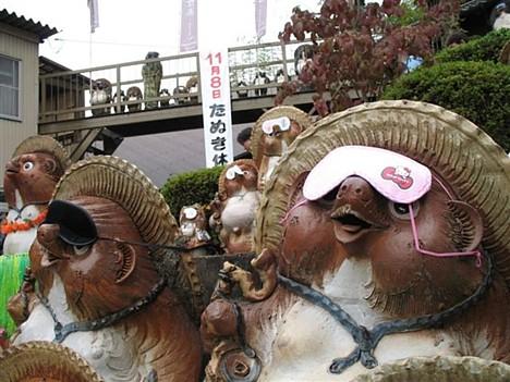 Tanuki holiday --