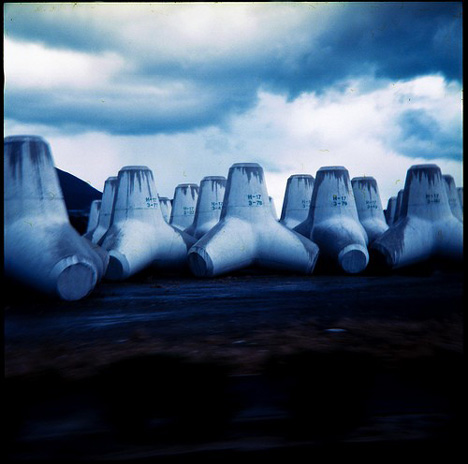 Tetrapod --