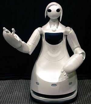 TPR-Robina, Toyota tour guide robot ---