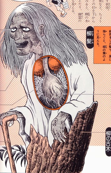 Yanagi-babaa anatomical illustration from Shigeru Mizuki's Yokai Daizukai --