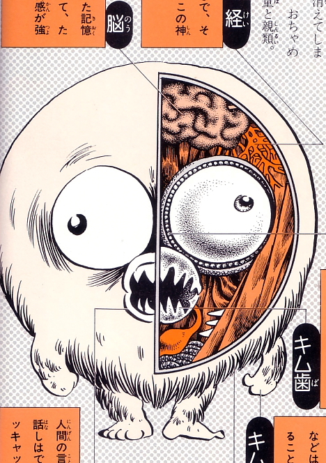 Kijimuna anatomical illustration from Shigeru Mizuki's Yokai Daizukai -- 
